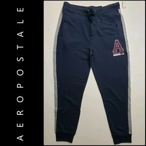 Aeropostale Women's Jogger Slim Pants Size Large